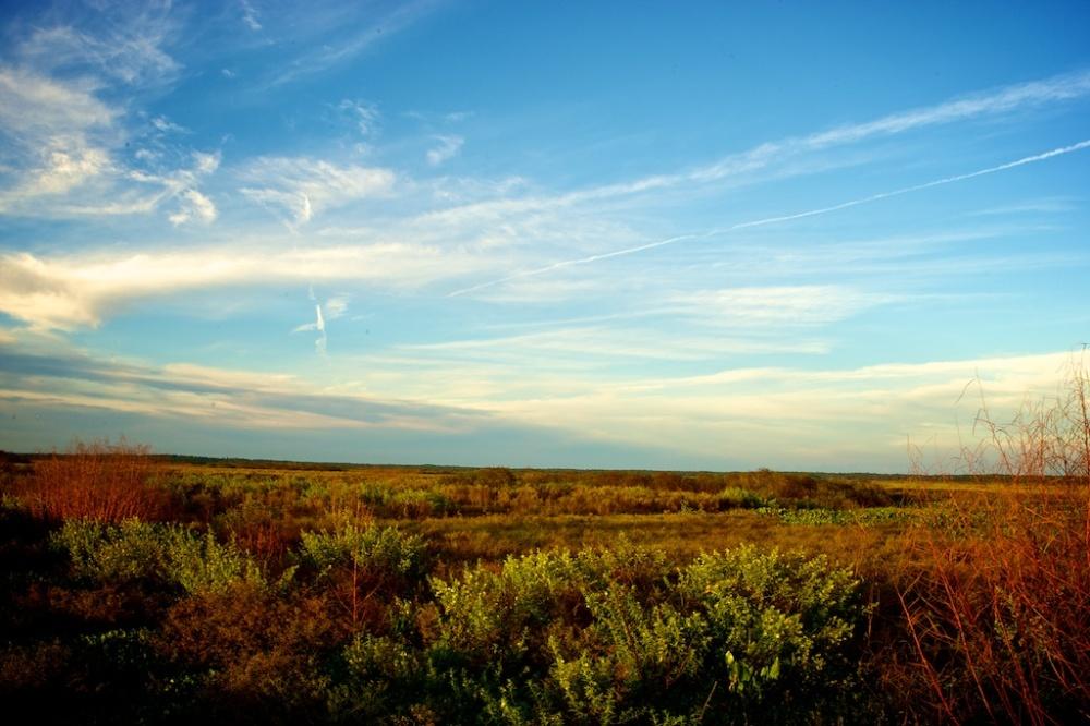 Fall into the Prairie